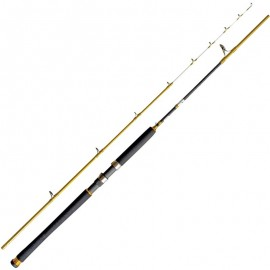 8436544034409-Cinnetic Explorer tanera Gold 240  Max.160 Gr